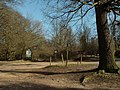 Part of Epping Forest on Wellington Hill near High Beach - geograph.org.uk - 723330.jpg