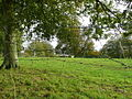 Pasture land near Petticombe Manor 2 - geograph.org.uk - 1009537.jpg