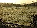 Pastures, Hambleden - geograph.org.uk - 1032698.jpg