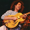 Pat Metheny.jpg