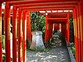 Path of Inari 御稲りさんの小道 - panoramio.jpg