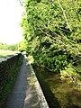 Pathway by stream - geograph.org.uk - 976403.jpg