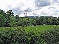 Peilonau tros afon Tryweryn. Pylons over river Tryweryn. - geograph.org.uk - 469207.jpg