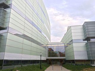 Princeton University Department of Psychology