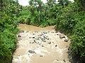 Pertemuan 2 Sungai di Luragung, Kuningan - panoramio.jpg