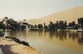 Peru Ica Oasis.png