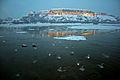 Petrovaradinska tvrđava zimi noću.jpg