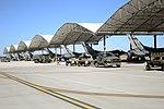 Phase II Operational Readiness Exercise (8473412895).jpg