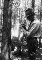 Photograph of District Ranger William Brown - NARA - 2128382.tif