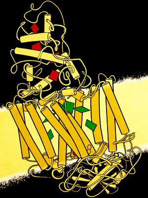 Johann Deisenhofer -  Schematic of photosynthetic reaction center structure in membrane.