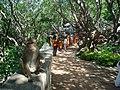 Phra Nakhon Khiri historical park 09.JPG