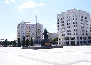 County capital in Vaslui County, Romania