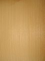 Picea abies wood2.jpg