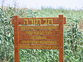 PikiWiki Israel 9855 Tel Tura.JPG
