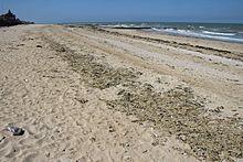 Plage de Saint Aubin sur Mer déserte, 19 avril 2017.jpg