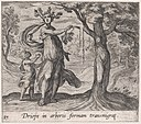 Plate 87- Dryope Changed into a Lotus Tree (Driope in arboris formam transmigrat), from Ovid's 'Metamorphoses' MET DP866528.jpg