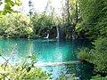 Plitvice 053 Burgeti.jpg