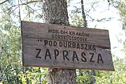 Pod Durbaszką Mountain hut (1).jpg