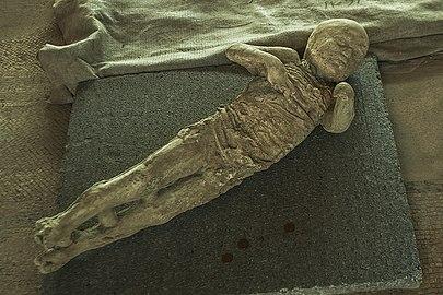Pompeii - Italy (15037060052).jpg