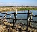 Pond at Calcethorpe - geograph.org.uk - 1718776.jpg