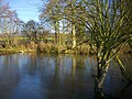 Pond close to Brockbury Hall - geograph.org.uk - 1074999.jpg