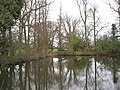 Pool east of Wroxall Abbey - geograph.org.uk - 1775892.jpg