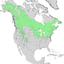 Populus tremuloides range map 1.png