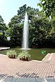 Portrait shot of a fountain at Kowloon Park, 2019.jpg