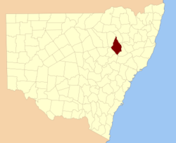 Pottinger NSW