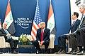 President Trump at Davos (49425288392).jpg