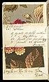 Printer's Sample Book, No. 19 Wood Colors Nov. 1882, 1882 (CH 18575281-14).jpg