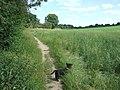Public Footpath - geograph.org.uk - 870669.jpg