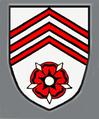 PzBtl 213 (V1).png