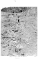 Queensland State Archives 4953 Reclamation Scoured Edge Hill Cairns 1953.png
