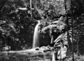 Queensland State Archives 865 Vision Falls Eacham Shire October 1927.png