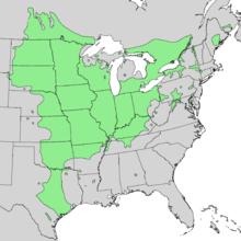 Quercus macrocarpa range map 1.png