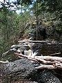 Raymondskill Falls - Pennsylvania (5678028652).jpg