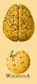 Reconocimiento neurociencias.PNG