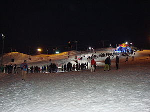 Red Bull Crashed Ice 2015.JPG