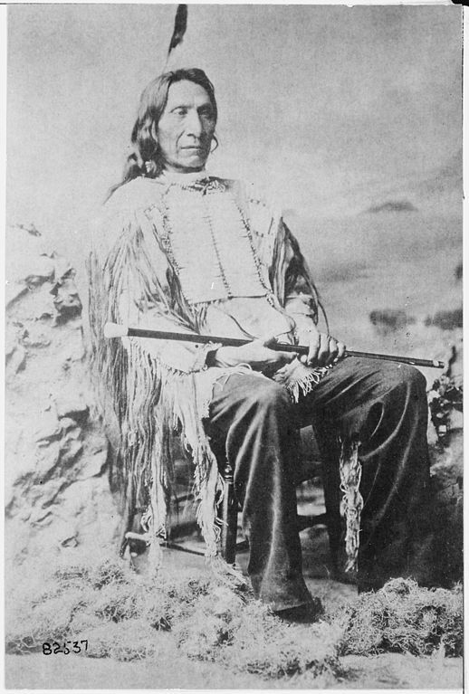 File Red Cloud Maqpeya Luta Chief Of The Oglala Sioux