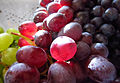 Red and green grapes.jpg