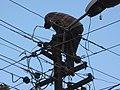 Repairing the power (71892232).jpg