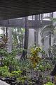 Resort Rain (6762615137).jpg