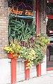 Restaurant window with flower box 786 01.jpg