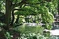 Rhododendronpark Bremen 20090513 208.JPG