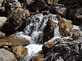 Rishikesh harikempty fallsdwar (390).JPG