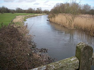 River Avon System