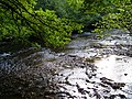 River Bovey at Parke - geograph.org.uk - 256584.jpg