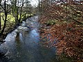 River Bray from Brayley Bridge - geograph.org.uk - 620947.jpg