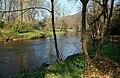 River Doon - geograph.org.uk - 1213306.jpg